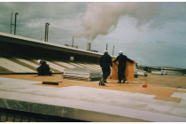 Employees boarding roof